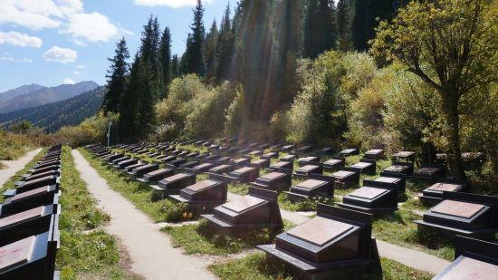 168位烈士成为永远守望天山的英灵
