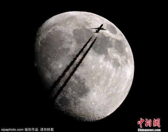 【人类月球日特刊】明月几时有